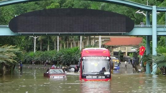 Cong tron cong hop thoat nuoc Quang Ninh